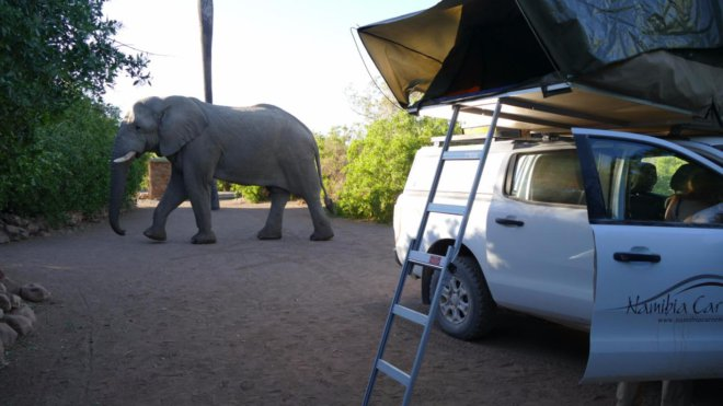 Africa car hire